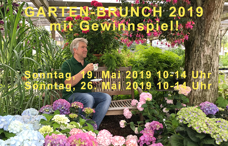 Gartenbrunch_new-800x500